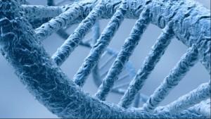 epigenetica e biologia delle credenze