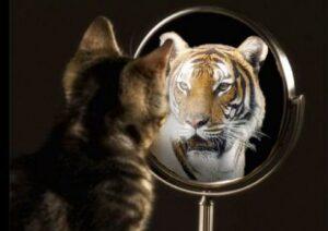 insicurezza e autostima